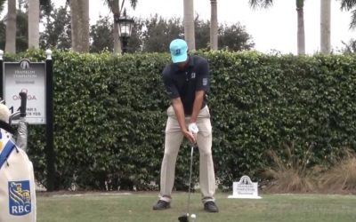 Matt Kucher, Lee Westwood, Gabby Lopez Swing Analysis and More