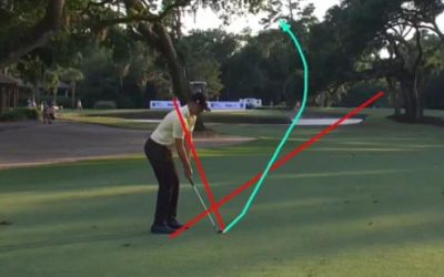The Swing Analysis of Webb Simpson and So Yuen Ryu- Beginner Online Clinics and more -26 June 2020