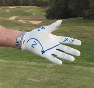 Left Hand Grip with line marks to show where the club sits